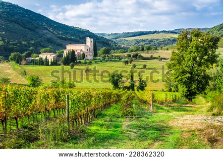 Vineyards and the monastery in Tuscany - stock photo