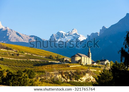 vineyards below church at Conthey, Sion region, canton Valais, Switzerland