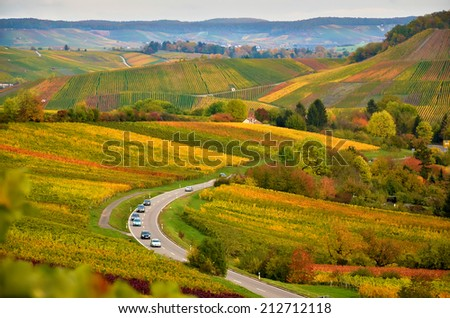 Vineyards in autumn in the south of germany - stock photo