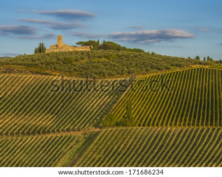 Vineyards in Chianti, Italy - stock photo