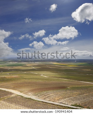 vineyards in the Champagne wine region france - stock photo