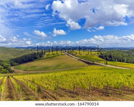 vineyards in the Chianti region of Tuscany, Italy - stock photo