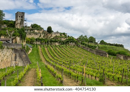 Vineyards of Saint-Emilion, one of the main red wine production areas of Bordeaux region, France - stock photo