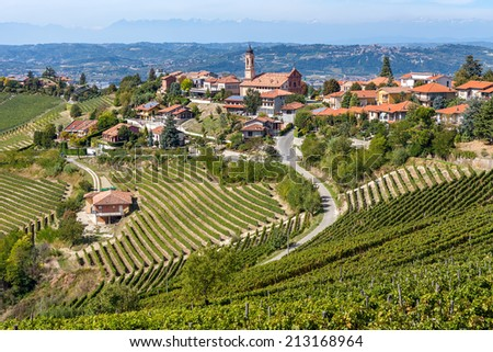 Vineyards on the hills and small town of Treiso on background in Piedmont, Northern Italy. - stock photo