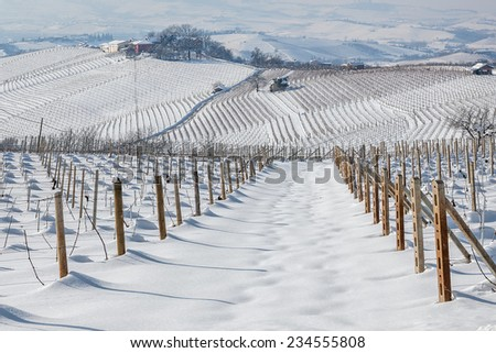 Vineyards on the hills of Langhe covered with snow in Piedmont, Northern Italy. - stock photo