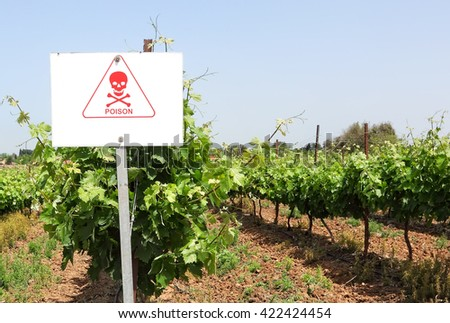 Vineyards. Prevention sign of danger on plantation after the insecticide's treatment against insect pests. Start of growing grapes season. Pest control. Agricultural theme. - stock photo