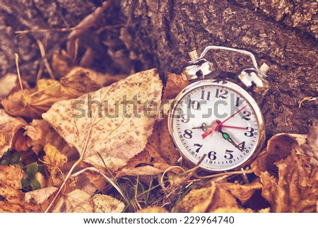 Vintage alarm clock in dry autumn leaves, Passing of time and season change concept. Toned image with Selective focus - stock photo
