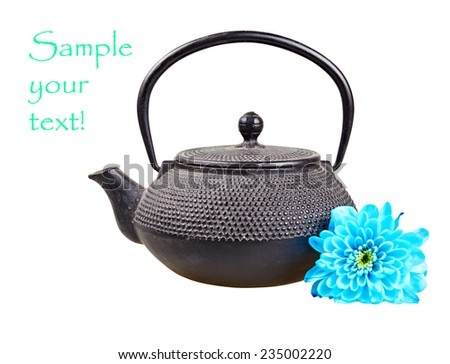 Vintage Asian teapot with a blue flower on a white background. - stock photo