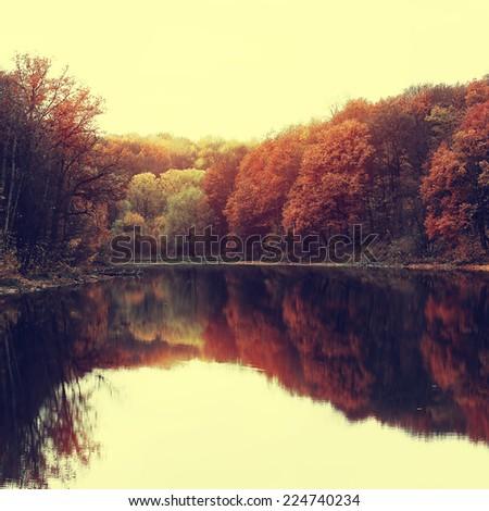 vintage autumn background - stock photo