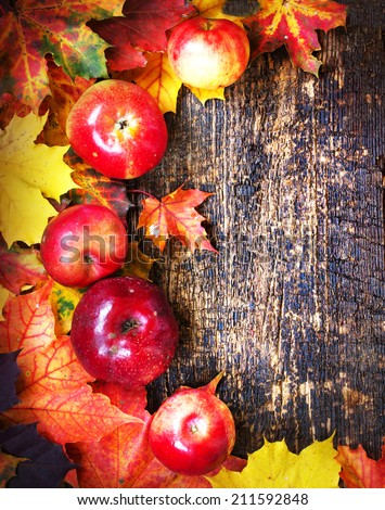 Autumn Nature Concept Fall Fruit Vegetables Stock Photo ...