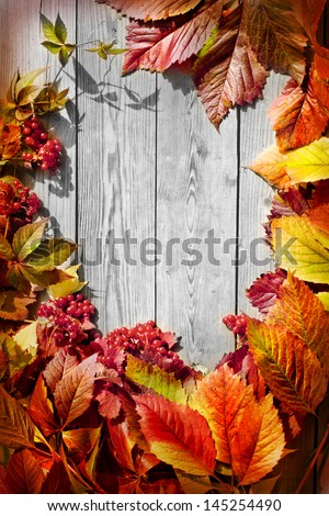 Vintage Autumn border from ashberry and and fallen leaves on old wooden table/Thanksgiving day concept - stock photo