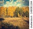 vintage autumn nature background - stock photo