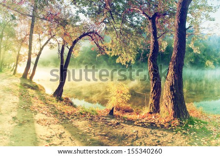 Vintage autumn wood on the river bank, fog over water - stock photo