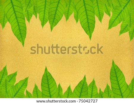 vintage background image with leaf