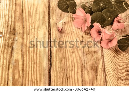 Vintage background with flowers of nasturtium isolated on brown wooden plank background useful as wallpaper, greeting card, mothers day, wedding invitations or invitations card. - stock photo
