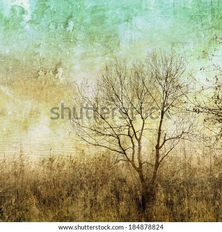 Vintage bare tree with wild herbs - stock photo