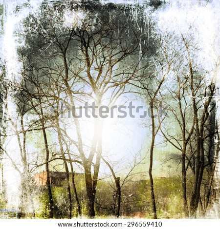 Vintage bare trees background - stock photo