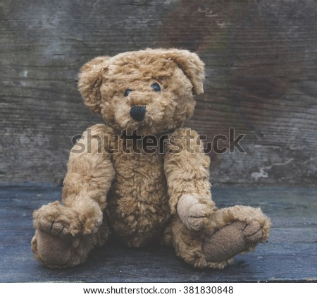 vintage bear - stock photo