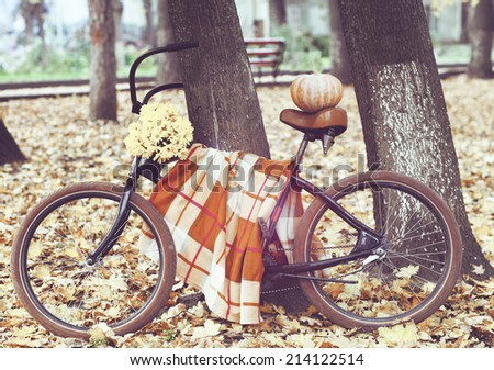 Vintage bicycle decorated with pumpking and flowers in autumn park - stock photo