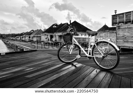 Vintage Bicycle in Black and White , Gili Lankanfushi in the Maldives - stock photo