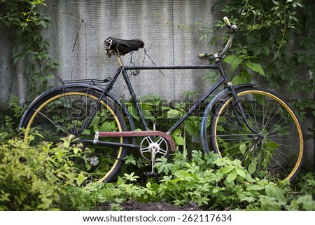 Vintage bicycle near green wall