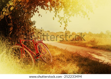 Vintage bicycle waiting near tree