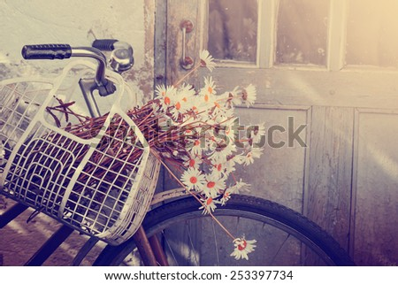 Vintage bicycle waiting  with daisy flowers closeup . - stock photo