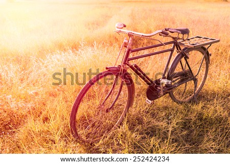 Vintage Bicycle with Summer grass field ; vintage filter style - stock photo