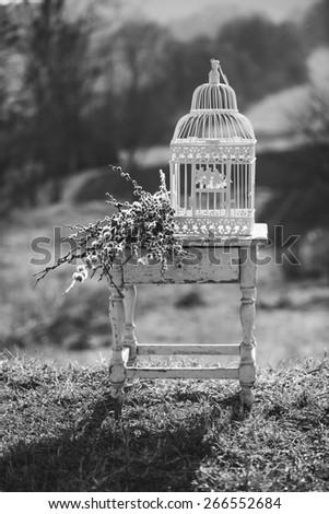 Vintage Bird cage - stock photo