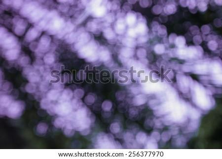 Vintage blurred bokeh. Defocused background - stock photo