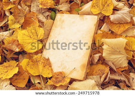 Vintage book with blank covers as copy space on fallen autumn leaves background - stock photo