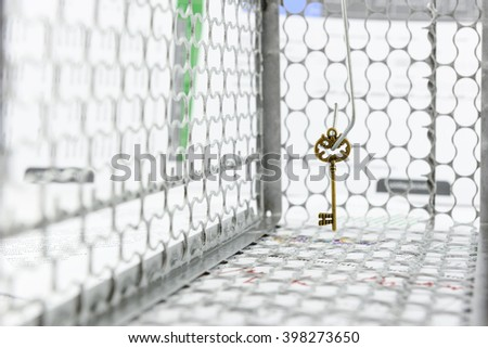 Vintage brass key as a lure placed on a hook in a rat trap cage. A concept of key success trap in business goal that attempt or trying to achieve in a wrong way, bad decision or highly over invested. - stock photo