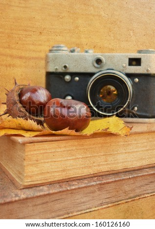 Vintage camera on book with chestnut - stock photo