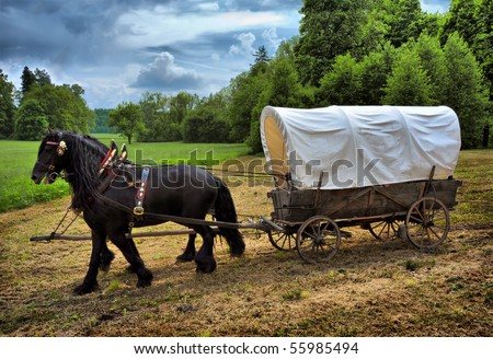 Vintage chariot with two black horses - stock photo