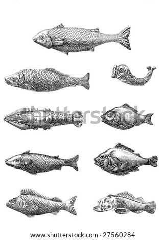 Vintage Chocolate Mold Sketches - Fish - stock photo
