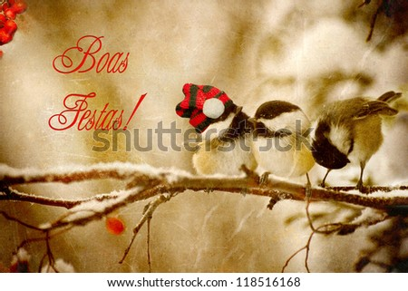 Vintage Christmas card with adorable chickadees in the snow with Portuguese language text-Boas Festas! - stock photo