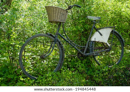 Vintage classical old Bicycle against a tree in field country side picnic outdoors background - stock photo