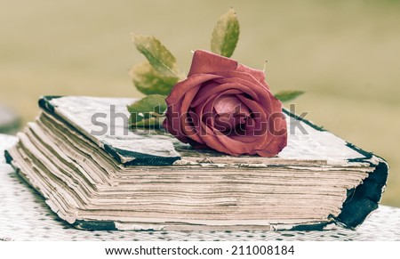 vintage closed book on wood desk with red rose - stock photo