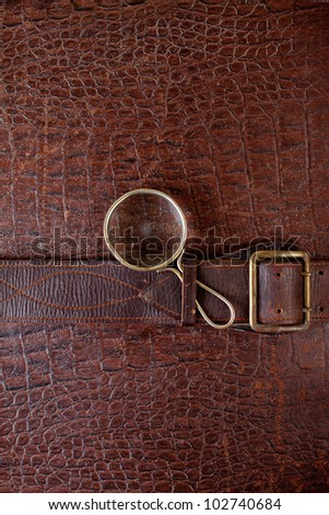 Vintage crocodile leather textured background with magnifying glass - stock photo