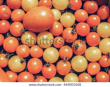 Vintage desaturated Cherry tomatoes (Solanum lycopersicum) vegetables, vegetarian food
