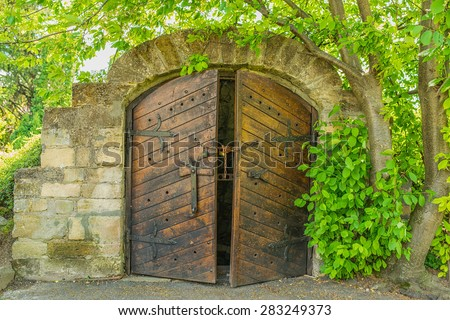 Vintage door to the cellar