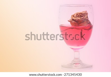 vintage dried rose in a red wine - stock photo