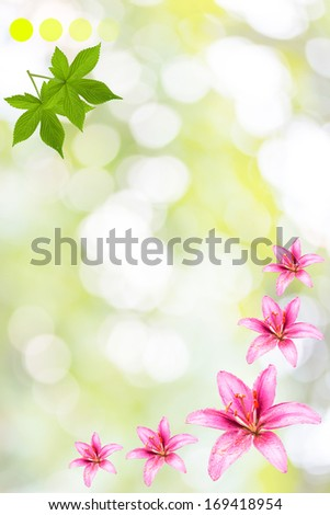 Vintage elegant background with flowers - stock photo