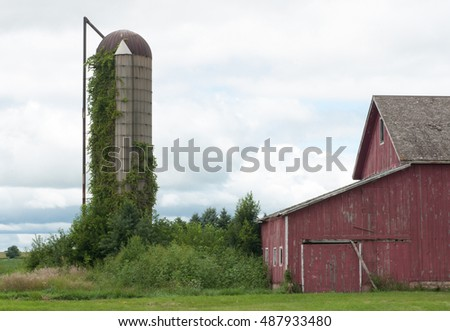 Vintage farm scene: old red barn and old stave silo covered with green vines