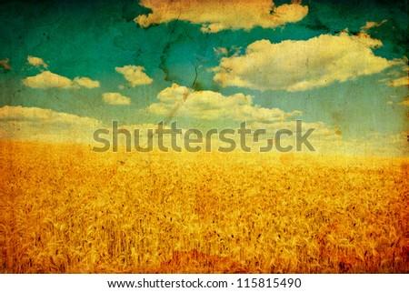 vintage field of wheat. meadow wheat under sky - stock photo