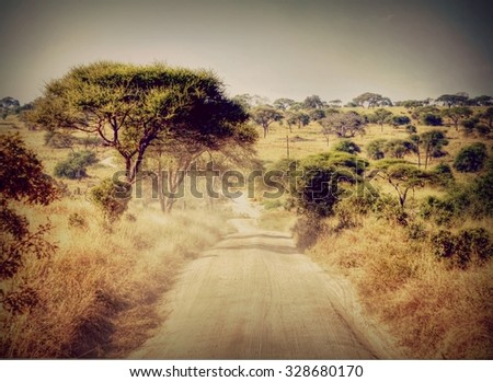 vintage filtered look from a dirt road winding through a African National park with a amazing natural landscape - stock photo