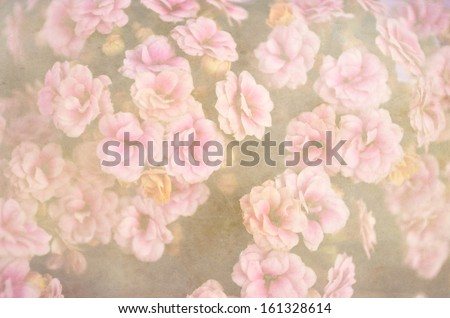 Vintage flowers background pattern - stock photo
