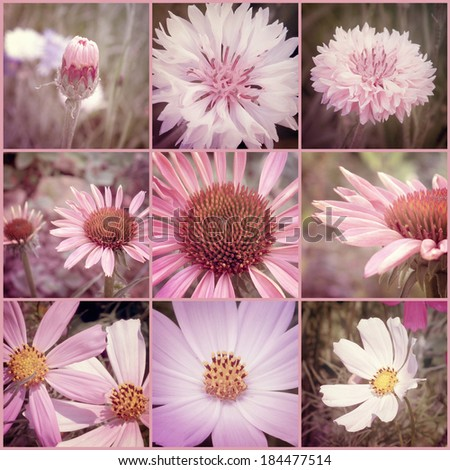 Vintage flowers collage. Art floral background with paper texture overlay. Retro style. - stock photo