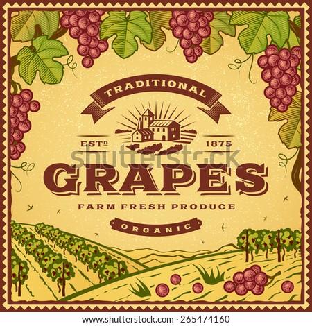 Vintage grapes label - stock photo