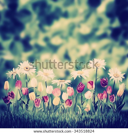Vintage green spring background with flowers - stock photo